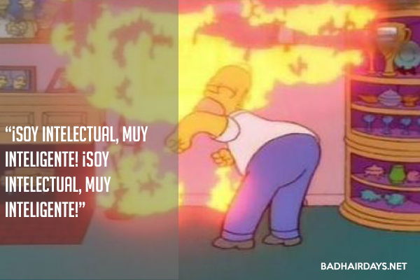 BHD_postquotes_simpsons_soy-intelectual