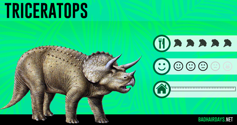 BHD-triceratops