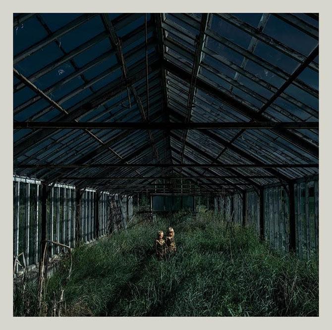 Foxing-Dealer-cover