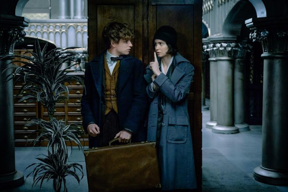 fantastic-beasts-and-where-to-find-them-6